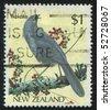 NEW ZEALAND - CIRCA 1985: stamp printed in New Zealand, shows bird, circa 1993. - stock photo