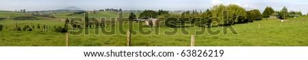 New Zealand farmland. Wide panoramic - stock photo