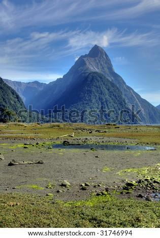 New Zealand Fiordland at the Milford Sound - stock photo