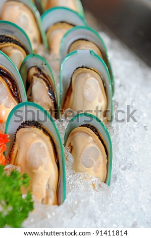New Zealand mussels - stock photo
