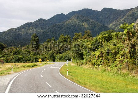 New Zealand native bush forest in Westland Tai Poutini National Park. - stock photo