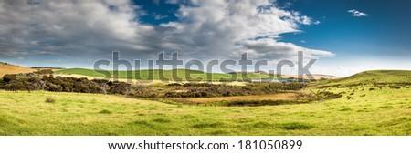 New Zealand pastures panorama, Cape Reinga - stock photo