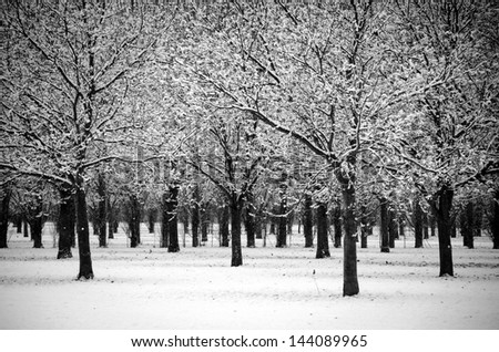 New Zealand winter - stock photo