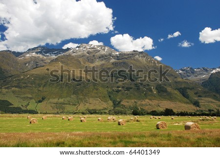 New Zealands countryside - stock photo