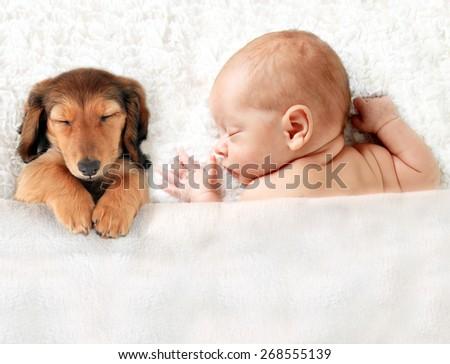 Newborn baby asleep on a blanket.  - stock photo
