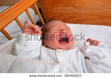 Newborn baby (1 day old) screaming in baby cot bed.  - stock photo