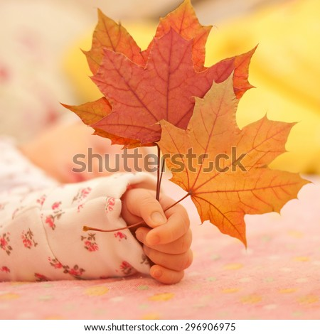 Newborn baby hand holding autumn leaves close-up.  - stock photo