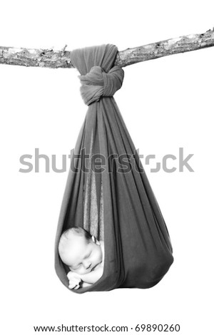 Newborn baby in a concept portrait. Hanging in cotton sling by tree branch