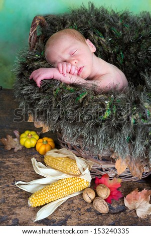 Newborn baby in a wicker basket with autumn leaves and nuts - stock photo