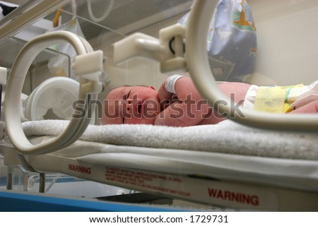 Newborn baby inside incubator - stock photo