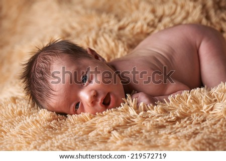 Newborn baby lying on a fluffy plaid, looking at camera, 2 week old, baby girl. - stock photo