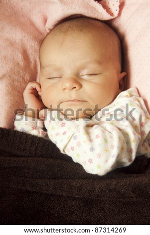 newborn baby sleep portrait