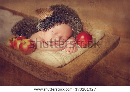 newborn baby sleeping in a box, resting on her own hands and elbows, hedgehog costume - stock photo