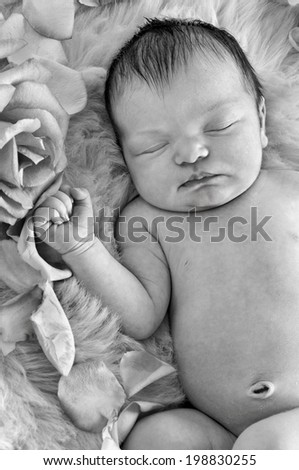 Newborn baby sleeping next to roses on soft fabric background in black and white format/Closeup of newborn baby sleeping next to roses in black and white