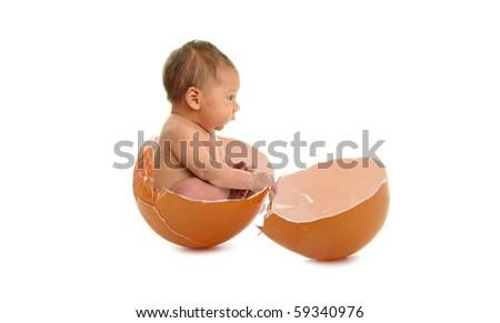 newborn , birth in egg - stock photo