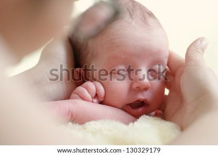 newborn head in mother hands - stock photo