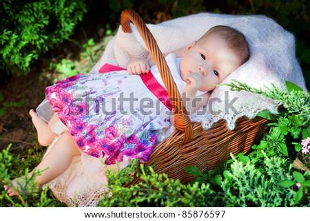 newborn in the basket - stock photo