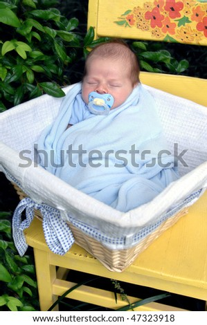 Newborn lays in wicker basket on a bright yellow wooden chair.  Chair and baby are surrounded by nature and green leaves. - stock photo
