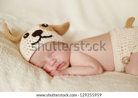 newborn wearing funny  knitted costume of dog - stock photo