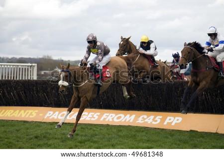 NEWBURY, BERKS- MAR 27: Jockey Brian Harding takes double hit over fences in the 2nd race at Newbury Racecourse, UK, March 27, 2010 in Newbury, Berks - stock photo