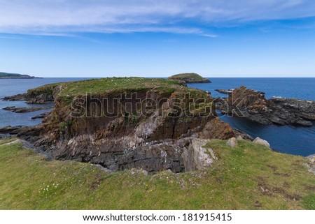 Newfoundland coastline in summer. - stock photo