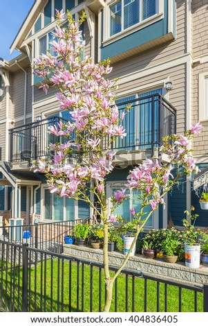Newly built condos with nicely trimmed and designed front yard in a residential neighborhood in Canada. Blossoms in from of the entrance, magnolia. - stock photo