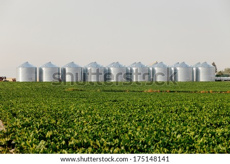 Newly built grain storage silos. - stock photo