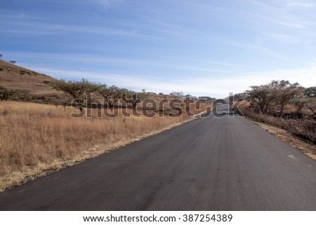 Newly laid rural asphalt country road lined with thorn trees in South Africa - stock photo