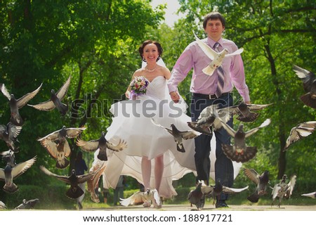Newly-married couple at the wedding walk   - stock photo