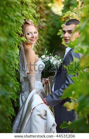 Newly-married couple in vineyard - stock photo