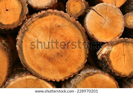 Newly-sawn  logs, stacked, ready for collection, texture, firewood  - stock photo