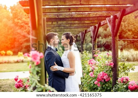 Newlyweds in park rosarium next to beautiful pink roses. Wedding session in park
