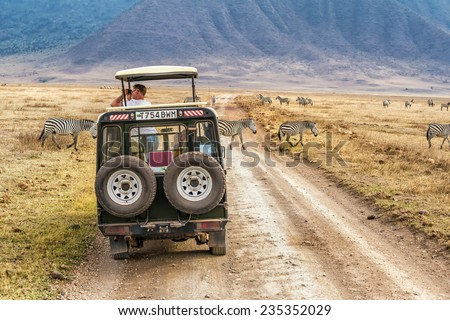 NGORONGORO, TANZANIA - OCTOBER 21, 2014 : Tourists watching zebras from a safari car in Ngorongoro conservation area. Ngorongoro Crater is a large volcanic caldera and a wildlife reserve. - stock photo