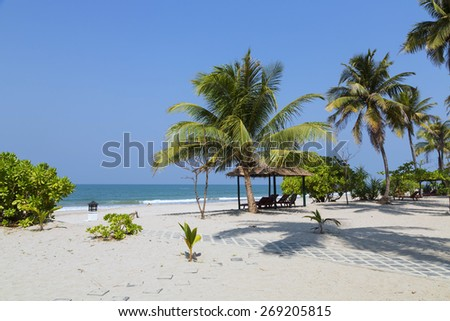 Ngwe Saung Beach palm coat, west coast of Myanmar - stock photo