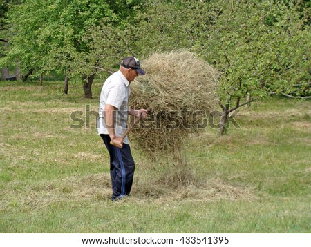 NICA, LATVIA - JUNE 7, 2016: Old man with fork is stacking the hay in garden. - stock photo