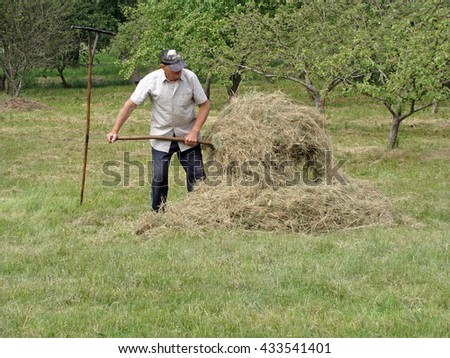 NICA, LATVIA - JUNE 7, 2016: Old man with fork is stacking the hay in garden.
