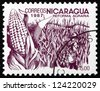 NICARAGUA - CIRCA 1983: a stamp printed in Nicaragua shows Coffee Beans, Agrarian Reform, circa 1983 - stock photo