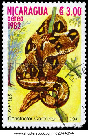 "NICARAGUA - CIRCA 1982: A Stamp printed in NICARAGUA shows the image of a Boa with the description ""Constrictor constrictor"" from the series ""Reptiles"", circa 1982 - stock photo"