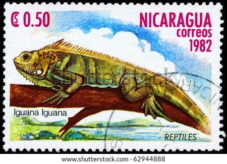 "NICARAGUA - CIRCA 1982: A Stamp printed in NICARAGUA shows the image of a Iguana with the description ""Iguana iguana"" from the series ""Reptiles"", circa 1982"