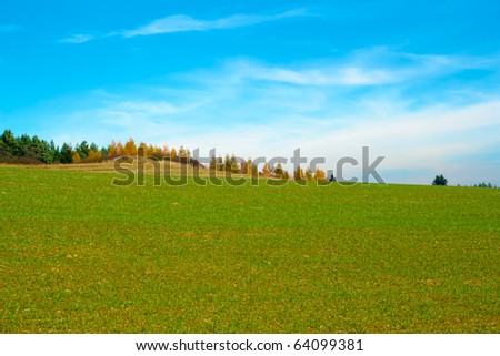 Nice autumn field with blue sky and clouds