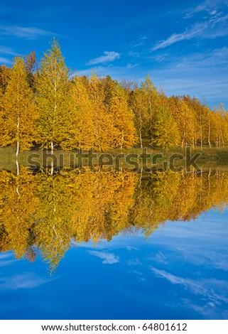 Nice autumn scene near water - stock photo