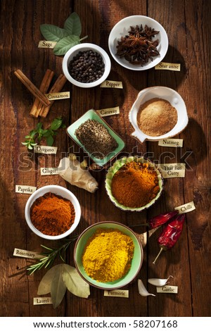 Nice composition of different spices with english labels - stock photo
