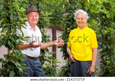 nice couple together in a summer park - stock photo