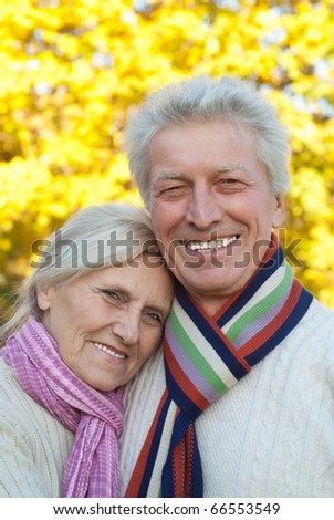 nice elderly couple in a autumn park