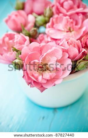 nice flowers - stock photo