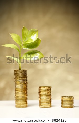 Nice fresh leaf is growing from coins - stock photo