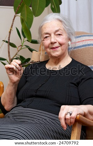 Nice grandmother in her chair - stock photo