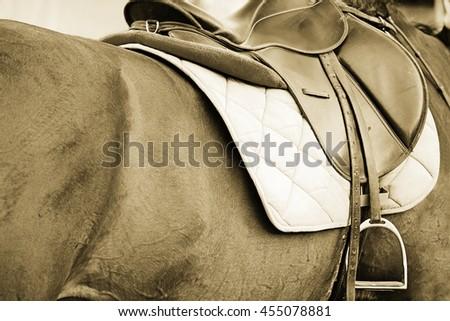 Nice image of a saddle seat on a horse back. Sepia tone. - stock photo