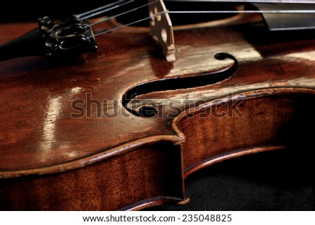 Nice old violin instrument - stock photo