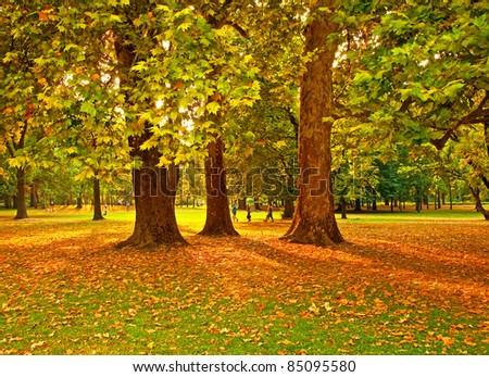 Nice park in autumn - stock photo